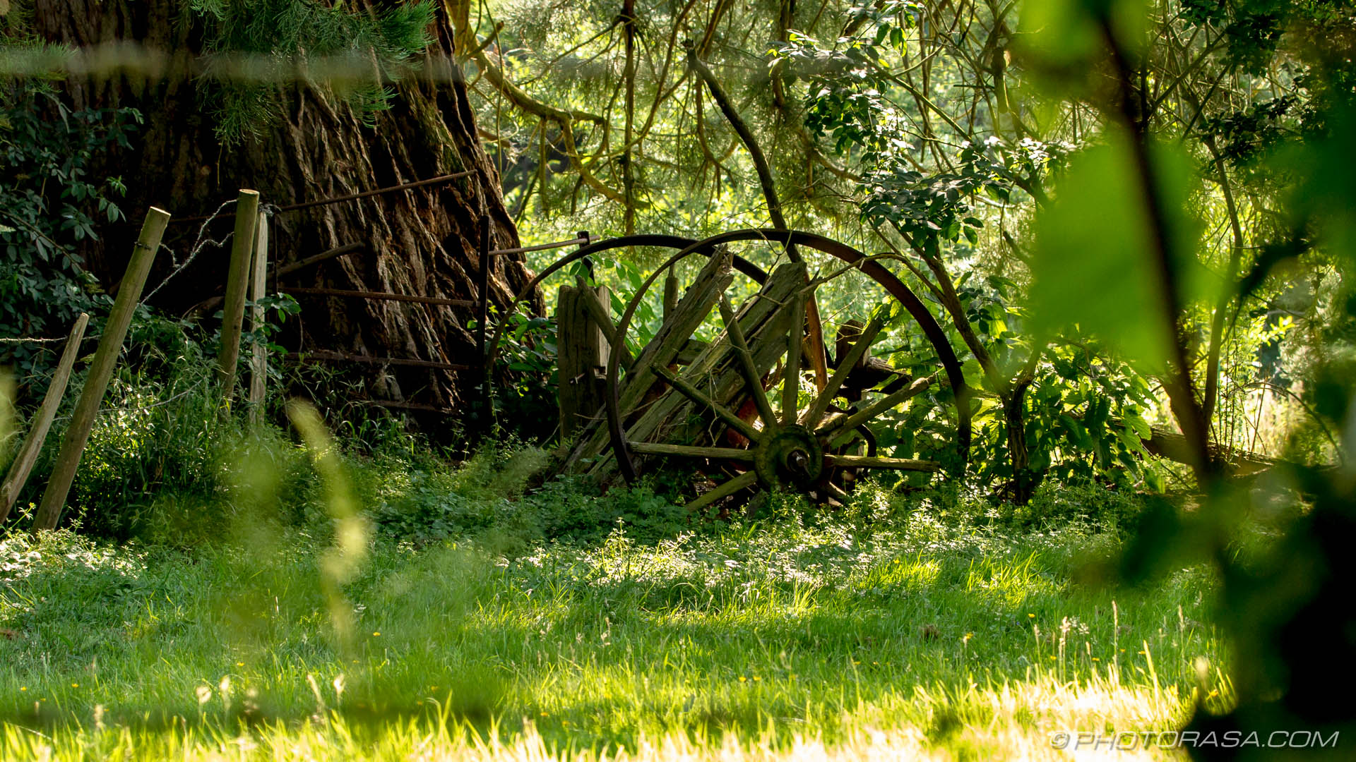 http://photorasa.com/chiddingstone-castle/broken-old-cart/