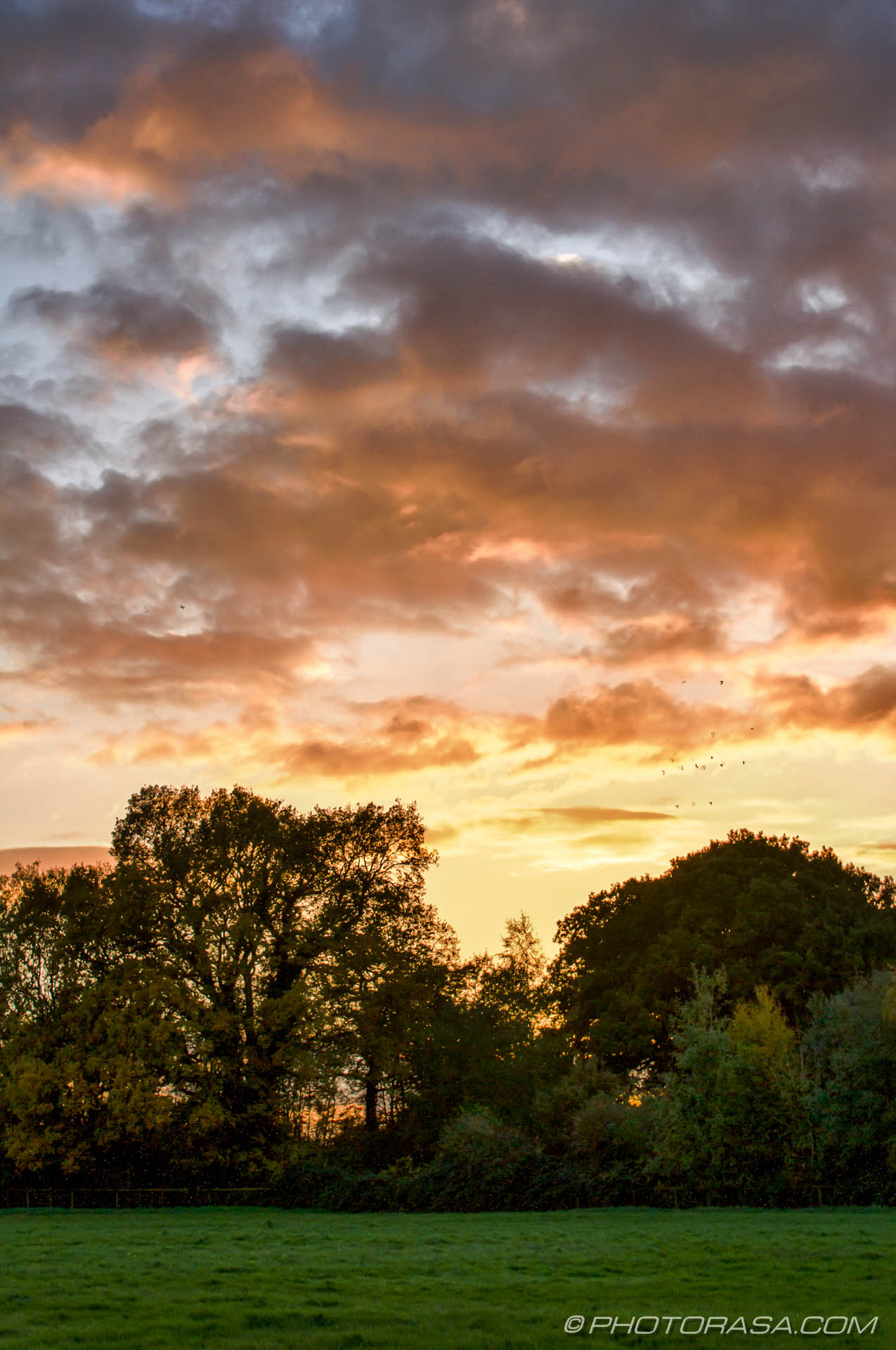 http://photorasa.com/november-evening-sky-farmers-fields/dark-clouds-lit-by-the-setting-sun/