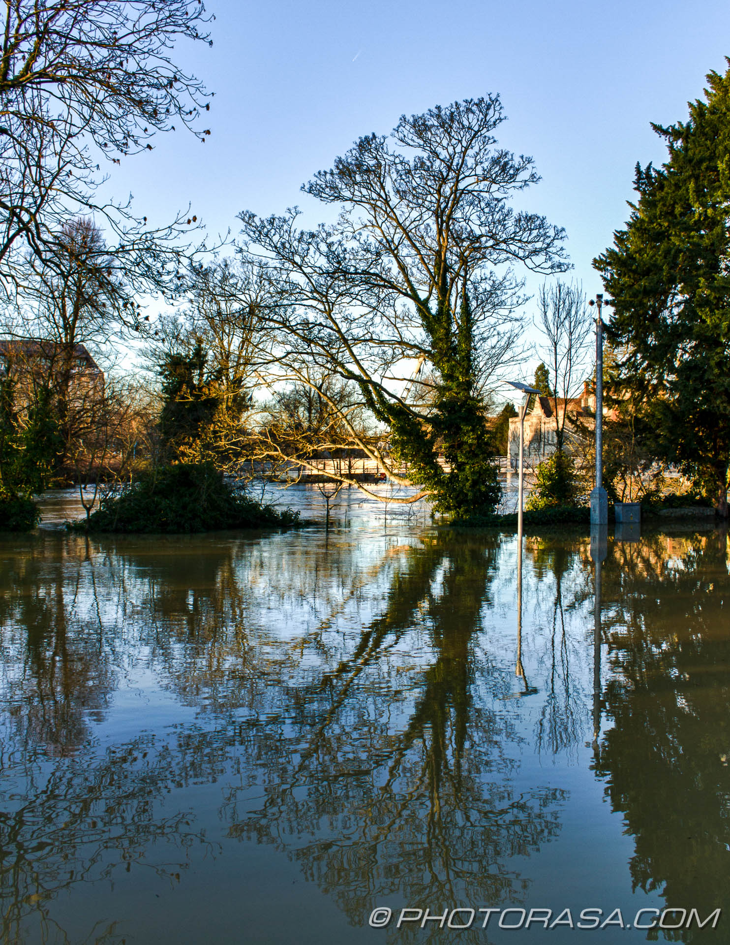 http://photorasa.com/wet-xmas-maidstone-river-medway-floods-town-centre/flooded-ground-and-tree-reflection/