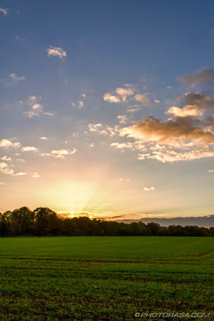 green fields, light sky and clouds at sunset