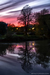 red sky and tree reflection in water