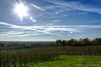 sunny day near linton