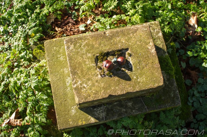 grave pedestal with conkers