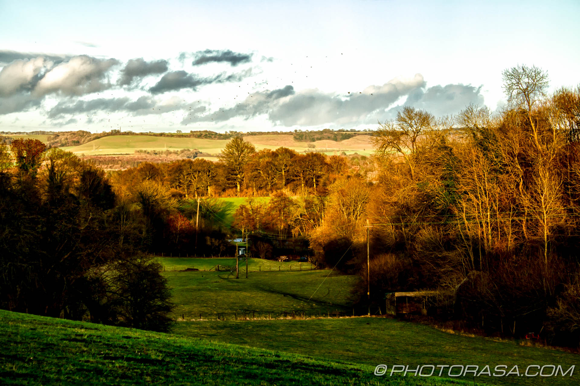 http://photorasa.com/countryside-otham/hdr-landscape-of-light-on-treetops-in-langley/