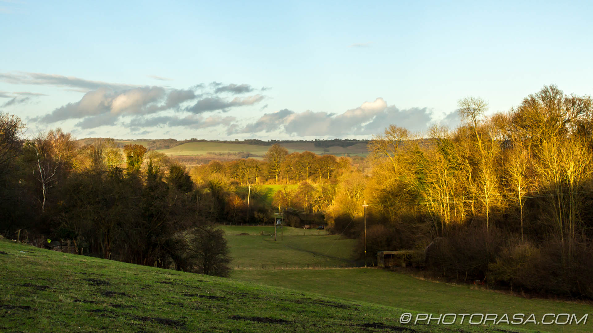 http://photorasa.com/countryside-otham/light-on-tree-tops-across-field-in-langley/
