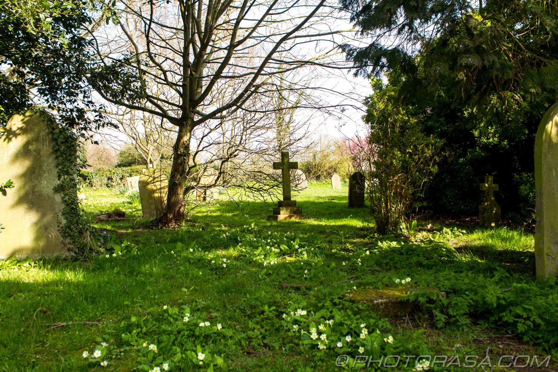 https://photorasa.com/saints-church-staplehurst-kent/stone-cross-in-cemetery-clearing/