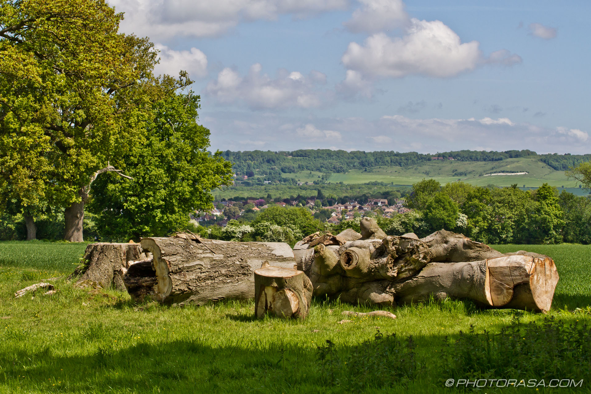 http://photorasa.com/countryside-otham/tree-lumber-in-otham/