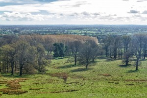 view to sutton valence