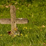 wooden cross grave marker