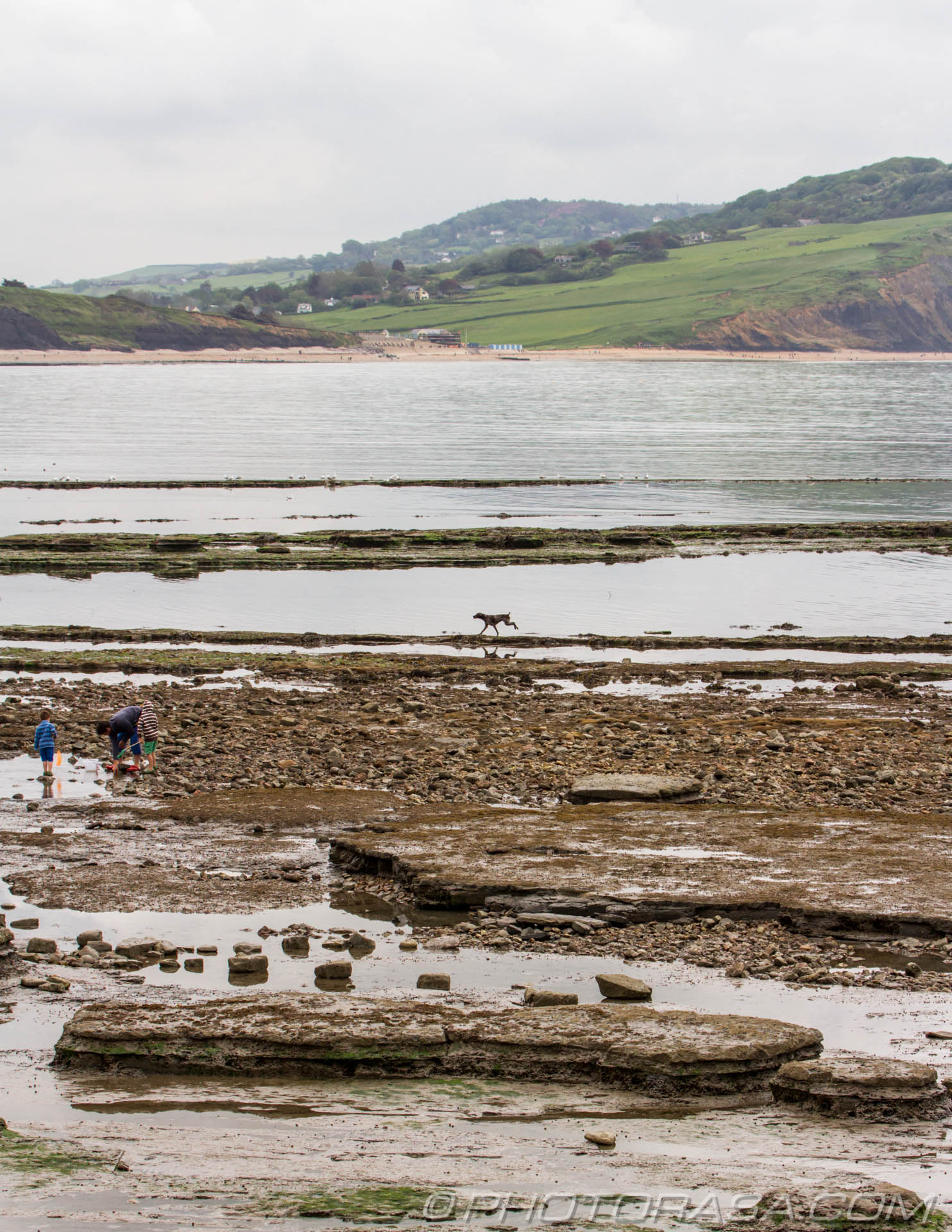http://photorasa.com/walking-dog-jurassic-coast/coastal-scene-with-landscape-dog-an-holidaymakers/