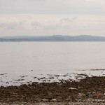 coastal view with dog