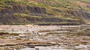 people looking for fossils at the jurassic cliffs of dorset