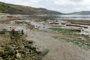 people walking on rocks at lyme regis
