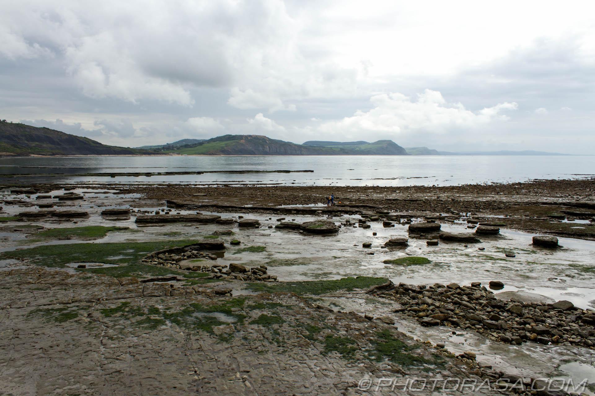 https://photorasa.com/jurassic-coast-lyme-regis/rocky-beach-landscape/