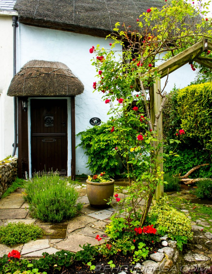 seaside thatched cottage