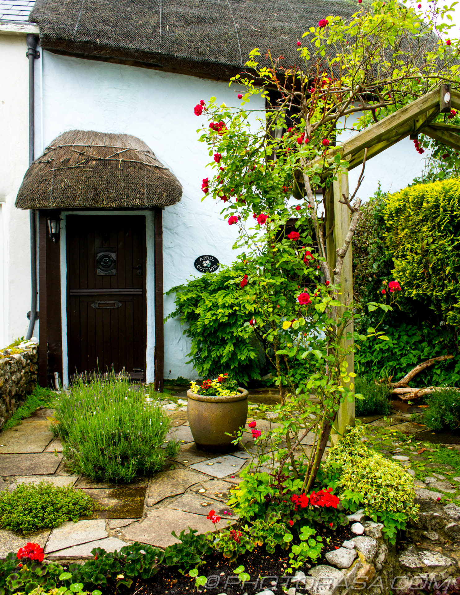 http://photorasa.com/lyme-regis/seaside-thatched-cottage/