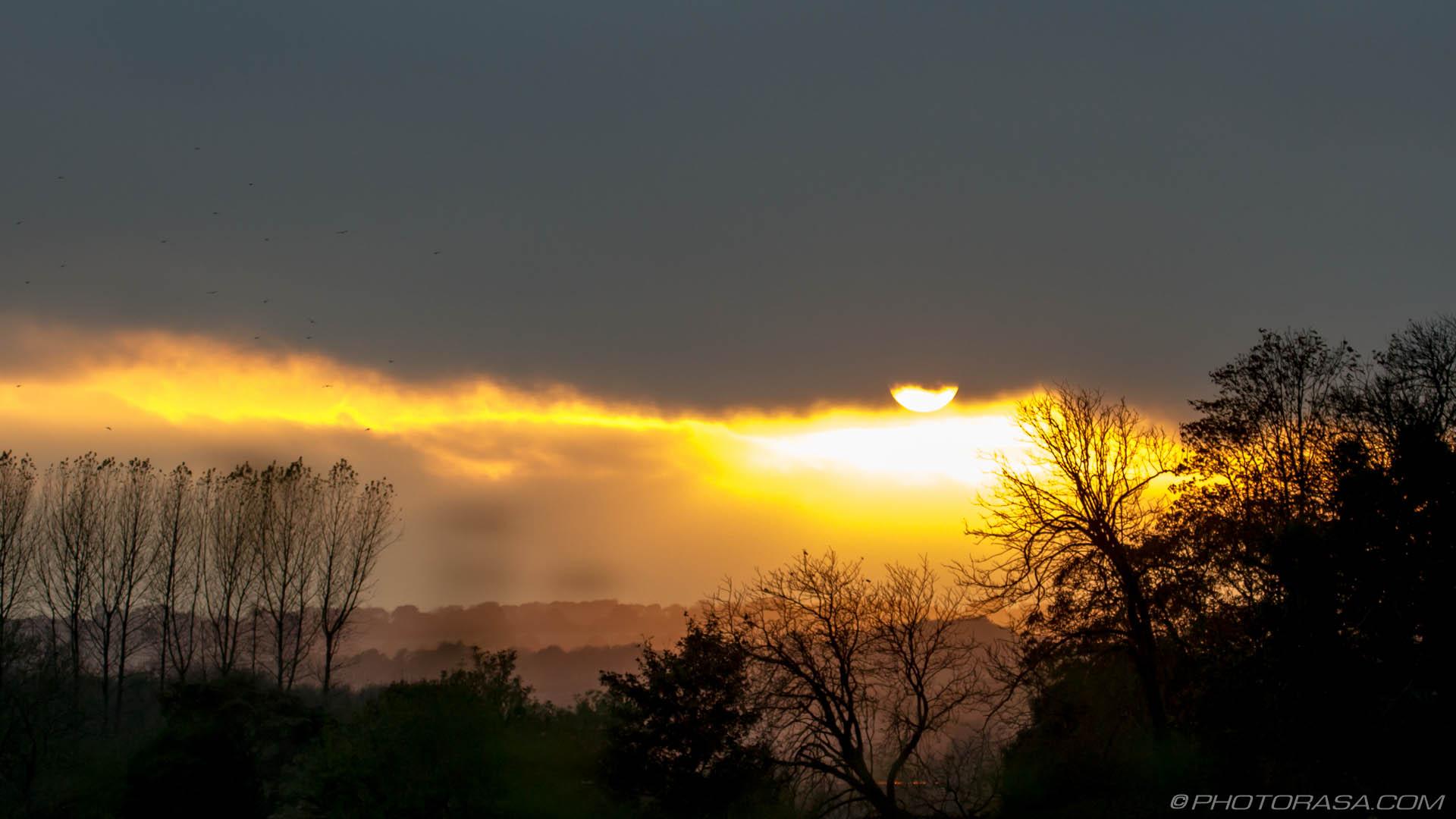 https://photorasa.com/sun-shining-through-the-clouds/sun-shining-through-clouds-and-tree-shadows/