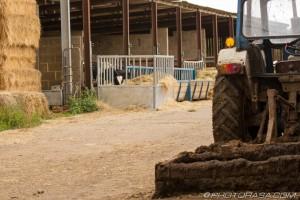 muddy tractor on farm