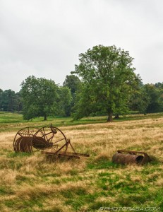 rusting farm machinery in field