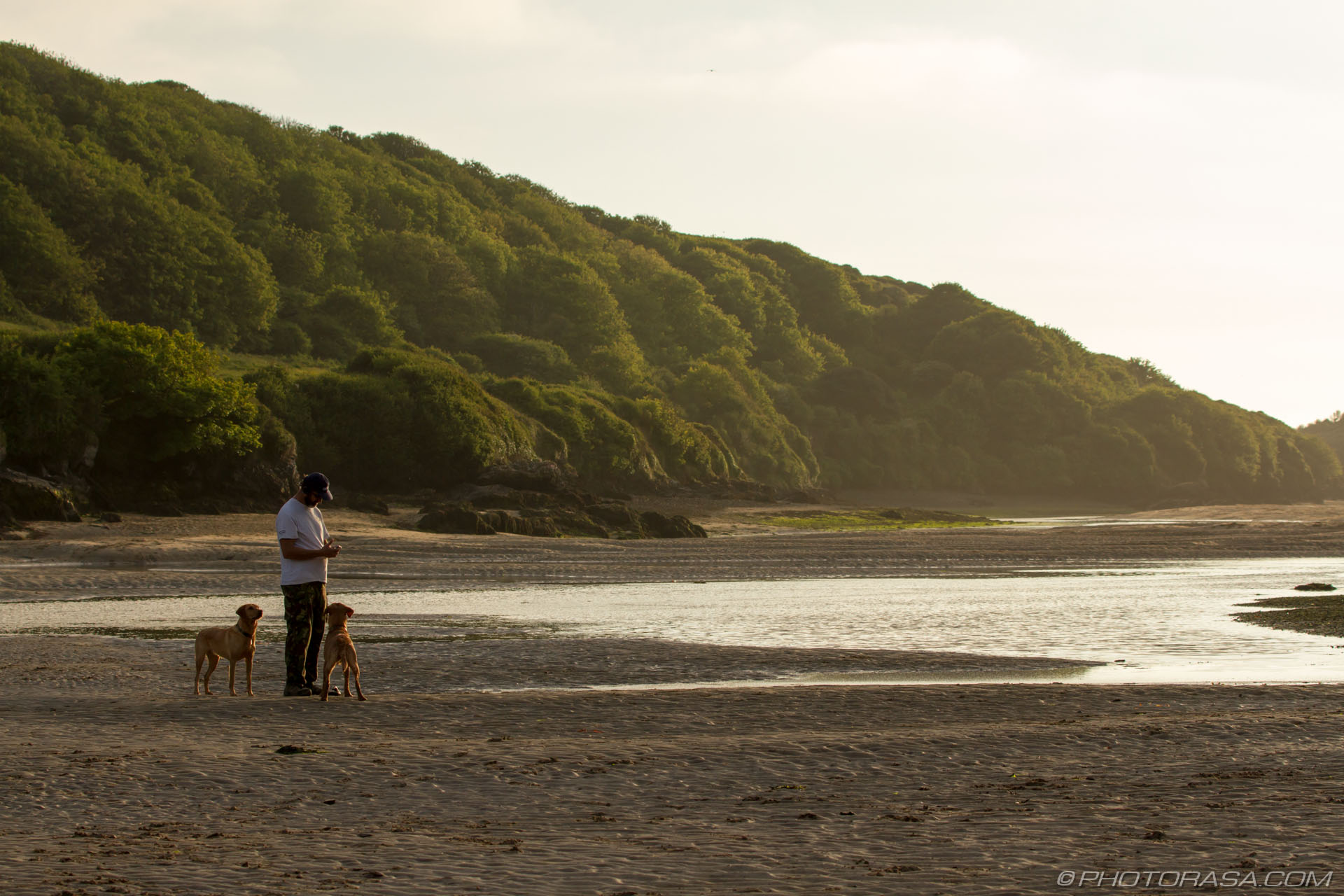 https://photorasa.com/newquay/two-dogs-wait-for-their-master/