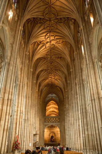elaborate lierne rib vaulted ceiling above the nave