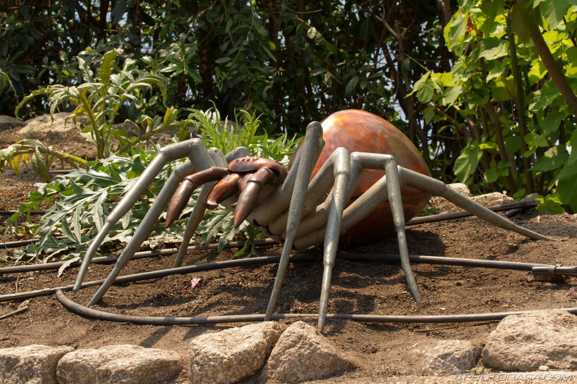 http://photorasa.com/garden-sculptures/metal-spider-sculpture/