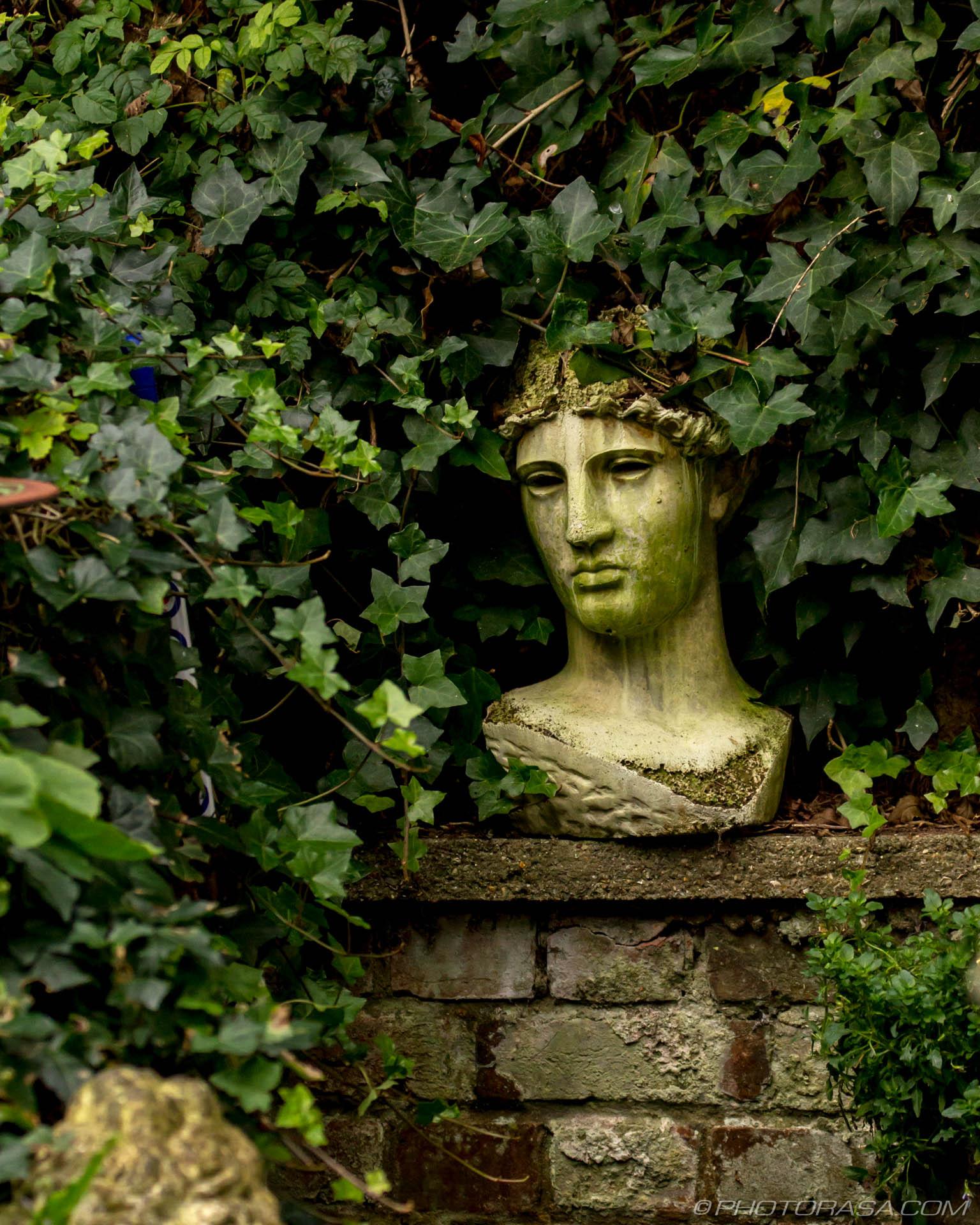 http://photorasa.com/garden-sculptures/roman-statue-head-in-vines/