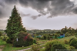 dark clouds over the allotment