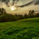 late afternoon sun over a green pasture