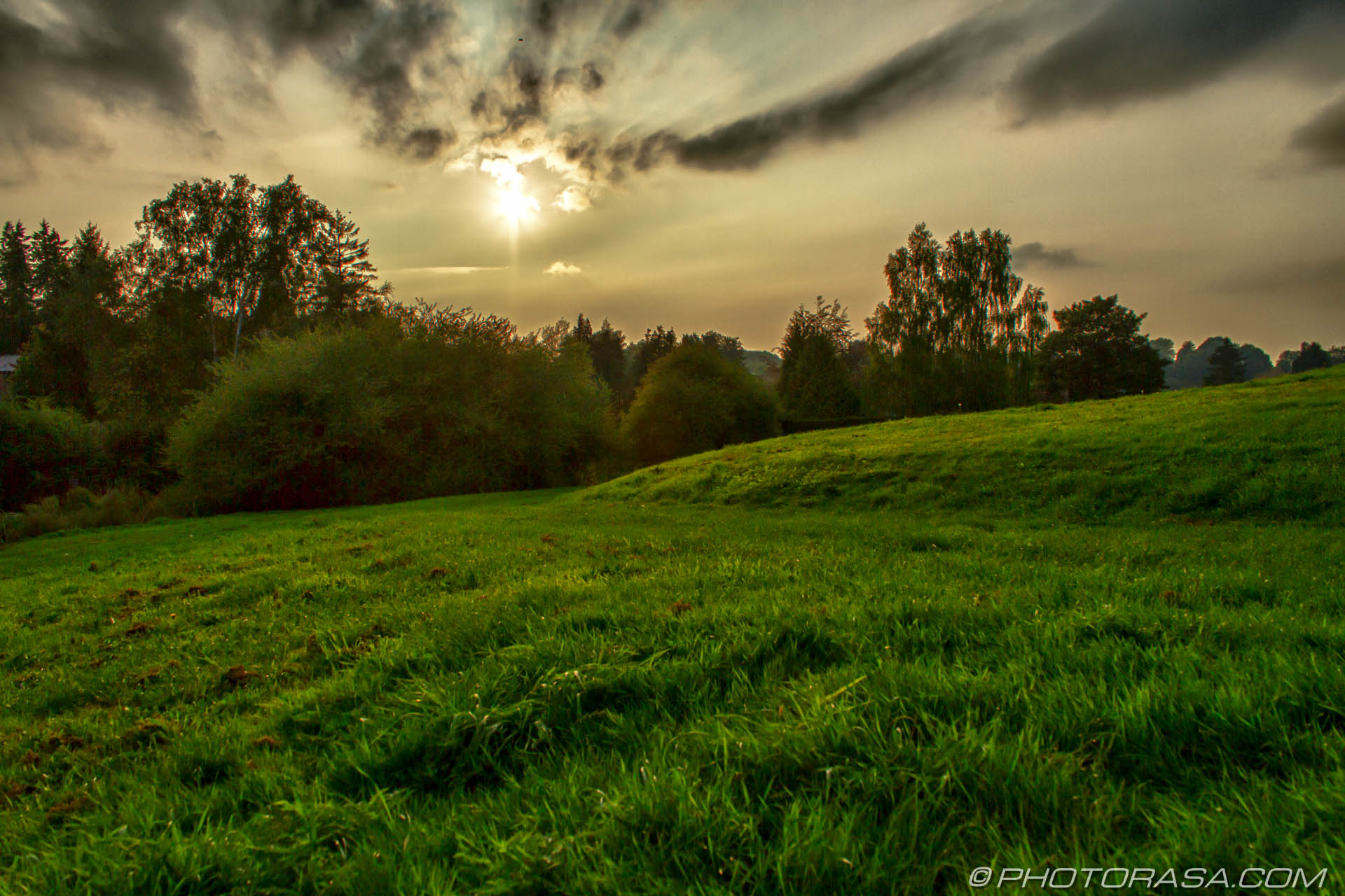 http://photorasa.com/loose-village/late-afternoon-sun-over-a-green-pasture/