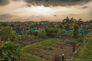 sunshine behind dark clouds over allotment plots