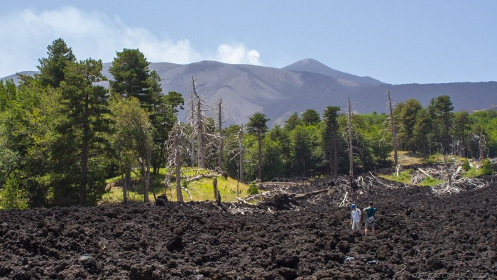 aftermath of 2002 lava flow