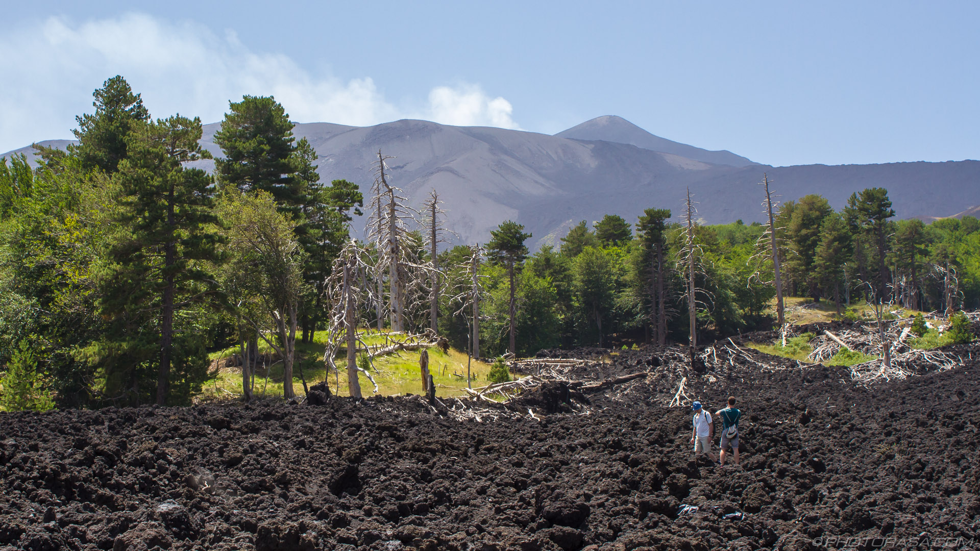http://photorasa.com/mount-etna/aftermath-of-2002-lava-flow/