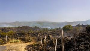 bush fires in sicily