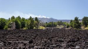sea of lava rock