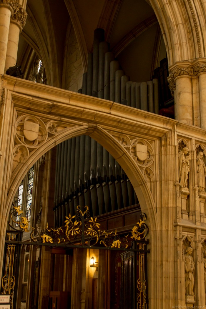 stone archway in front of organ pipes